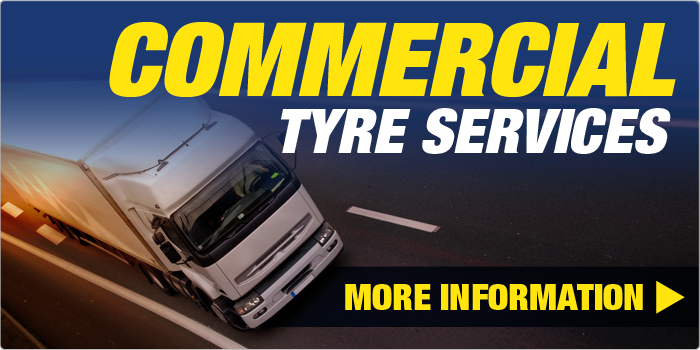 Tanvic Truck Tyres